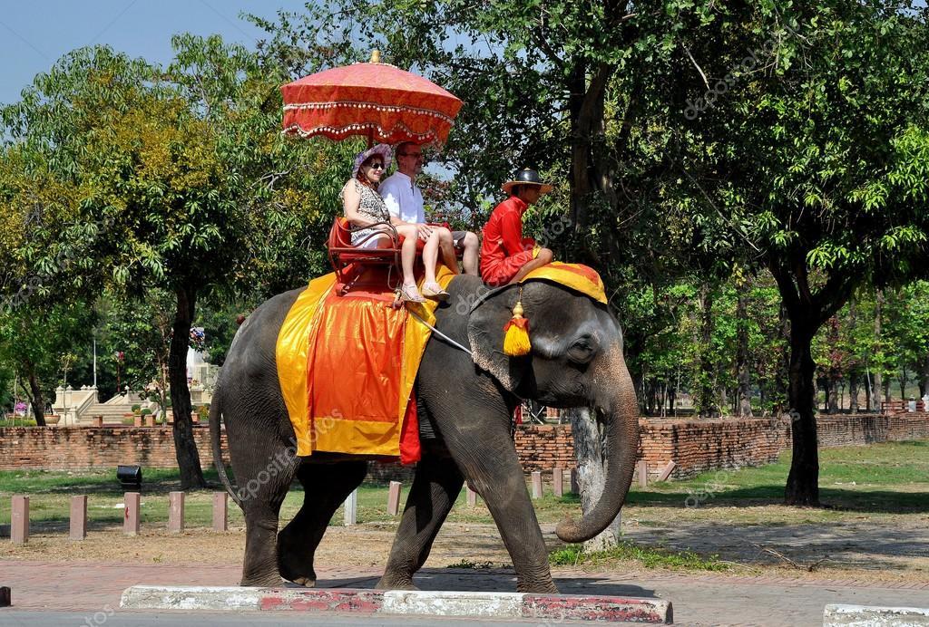 Royal Safaris
